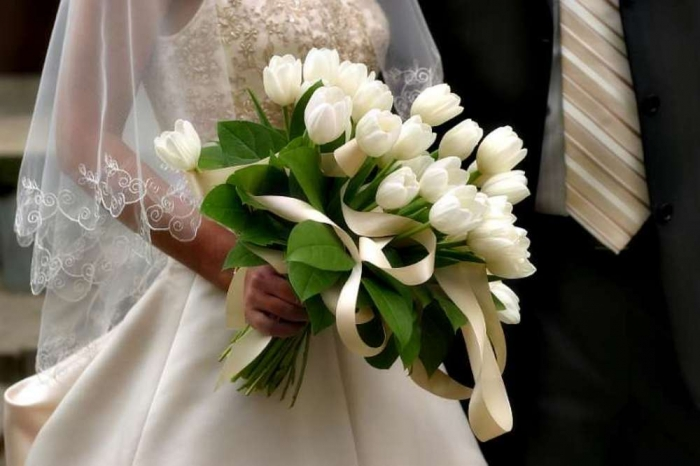 White-tulips-flowers.-3 How to Increase the Beauty of White Tulip Flowers