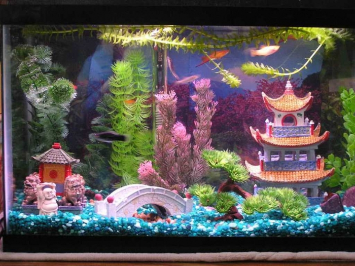 aquarium-decoration-themes-cool-dragon-chinese-aquarium-decoration800-x-600-76-kb-jpeg-x How to Decorate Your Boring Fish Tank