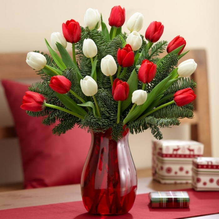 red-and-white-tulip-bouquet-3 How to Increase the Beauty of White Tulip Flowers