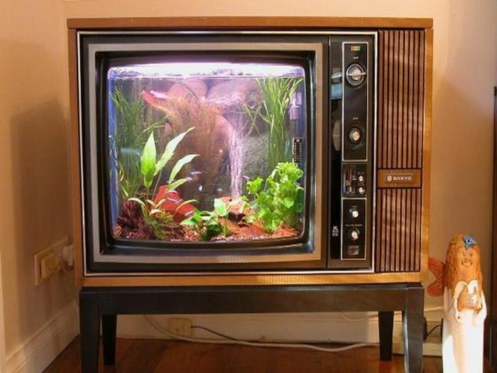 the-stunning-photo-above-is-segment-of-aquarium-decoration-ideas800-x-600-67-kb-jpeg-x How to Decorate Your Boring Fish Tank