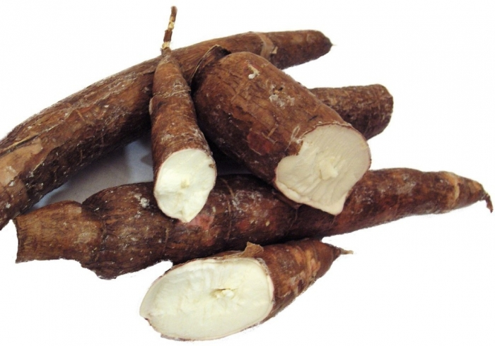 Cassava How Can I Increase My Chances of Having Twins?