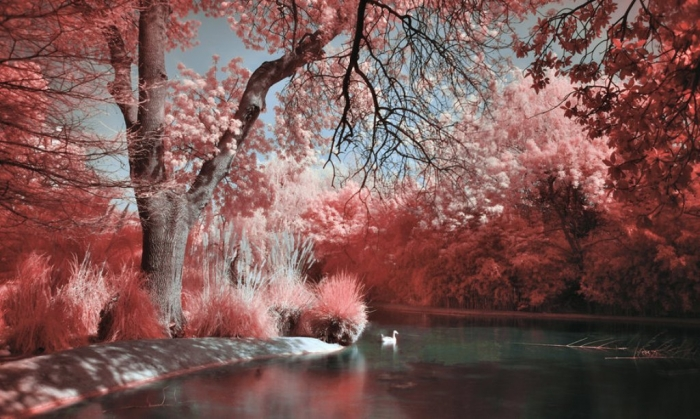 How-Can-I-Know-My-Future-river_of_dreams_by_chaton How Can I Know My Future?