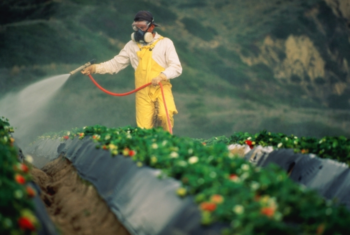 pesticide-spraying- How Can I Help the Environment?