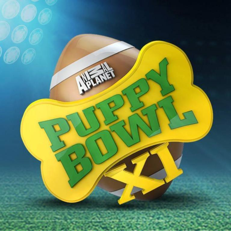 10-Facts-You-Don't-Know-about-Puppy-Bowl-1 Top 10 Facts You Don't Know about Puppy Bowl