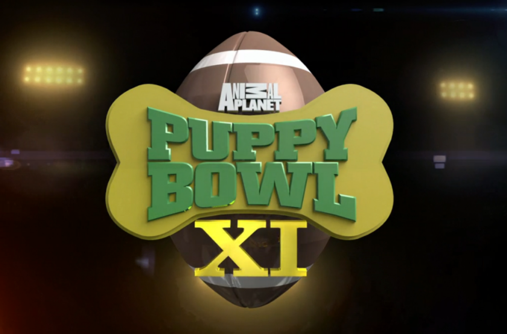 10-Facts-You-Don't-Know-about-Puppy-Bowl-7 Top 10 Facts You Don't Know about Puppy Bowl