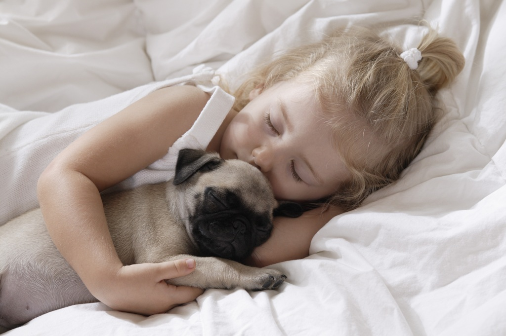 5-Interesting-Facts-Revealing-What-Your-Dog-Dreams-About-7 5 Interesting & Weird Facts Revealing What Your Dog Dreams About