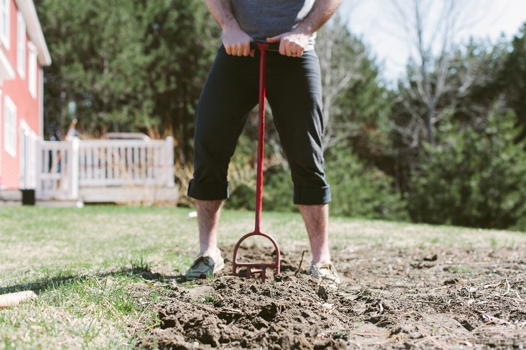 How-Can-I-Stop-My-Dog-from-Digging-23 How Can I Stop My Dog from Digging?