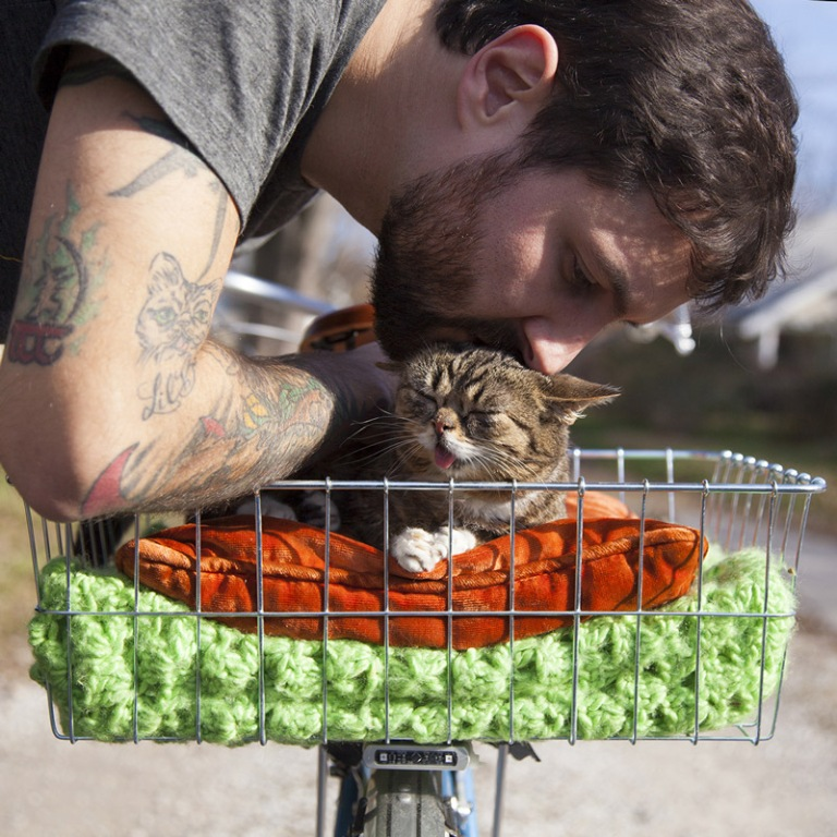 What-Is-the-Secret-behind-Lil-Bub's-Unique-Appearance-10 What Is the Secret behind Lil Bub's Unique Appearance?