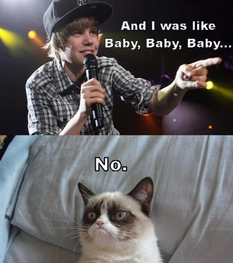 Why-Is-the-Grumpy-Cat-Always-Angry-18 Why Is the Grumpy Cat Always Angry?