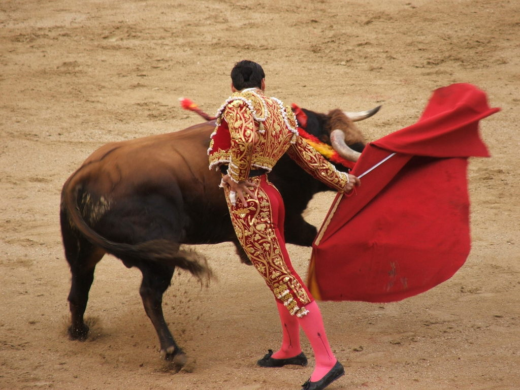 Bullfighting-in-spain Adorable Facts You Should Know About Some Animals