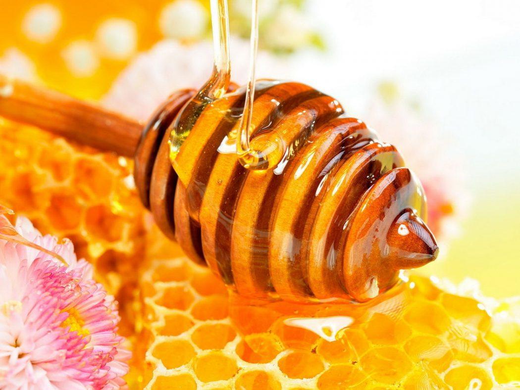 honey-bee-wallpaper-6 Amazing Facts About Honeybees