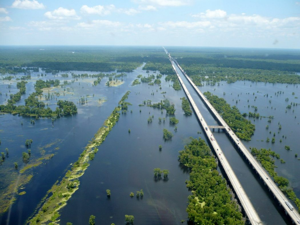 Manchac_Swamp Top 10 Biggest Bridges in USA