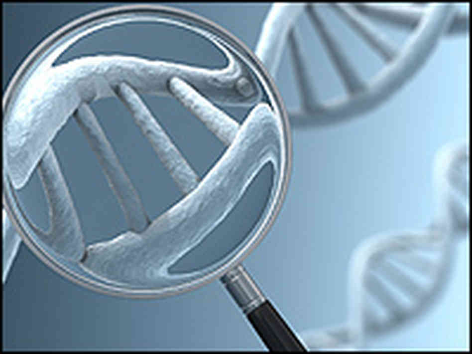 dna Amazing Facts About DNA