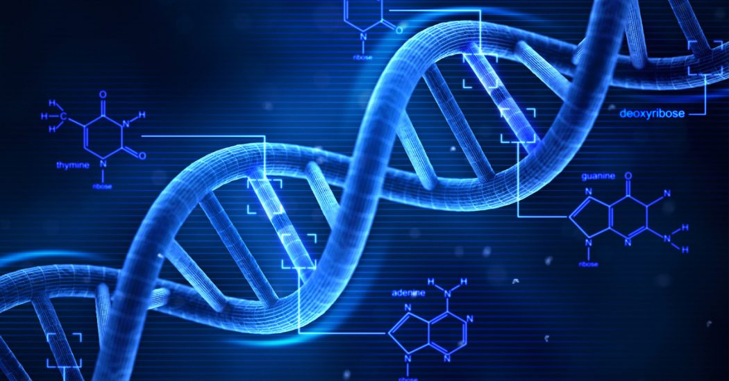 dna1 Amazing Facts About DNA