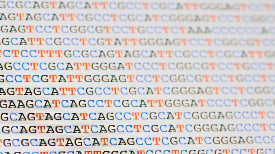 genome_wide-d424981067d8069d1ab99d19995651d009c9c849 Amazing Facts About DNA