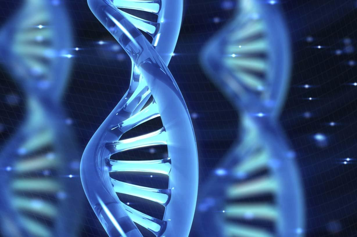 machine2 Amazing Facts About DNA
