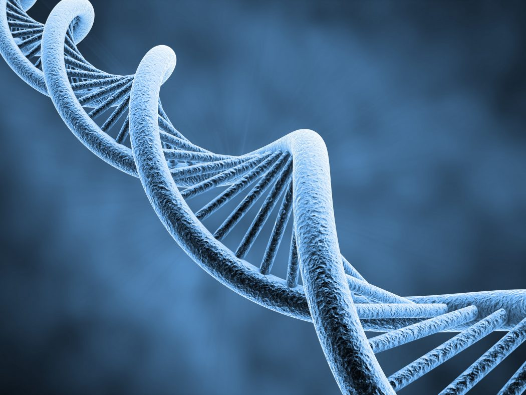 shutterstock_61775431 Amazing Facts About DNA