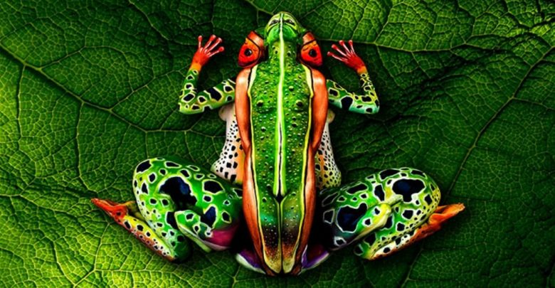 Photo of 58 Most Marvelous 3D Body Paintings