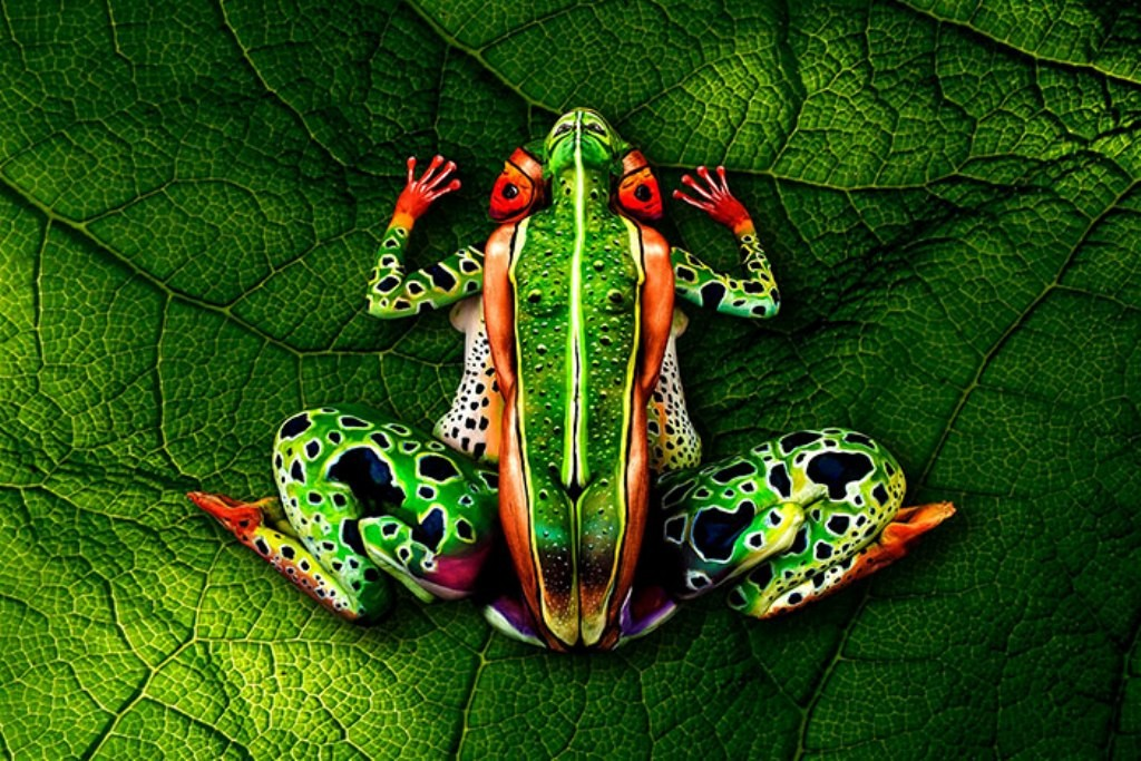 3D-Body-Paintings-32 58 Most Marvelous 3D Body Paintings