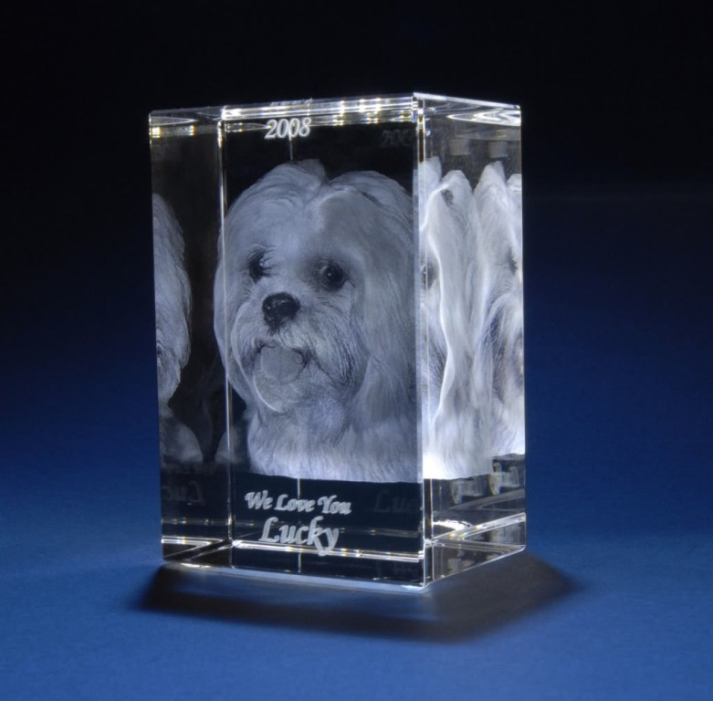 3D-Portraits-in-Glass-36 49 Most Fabulous 3D Portraits in Glass