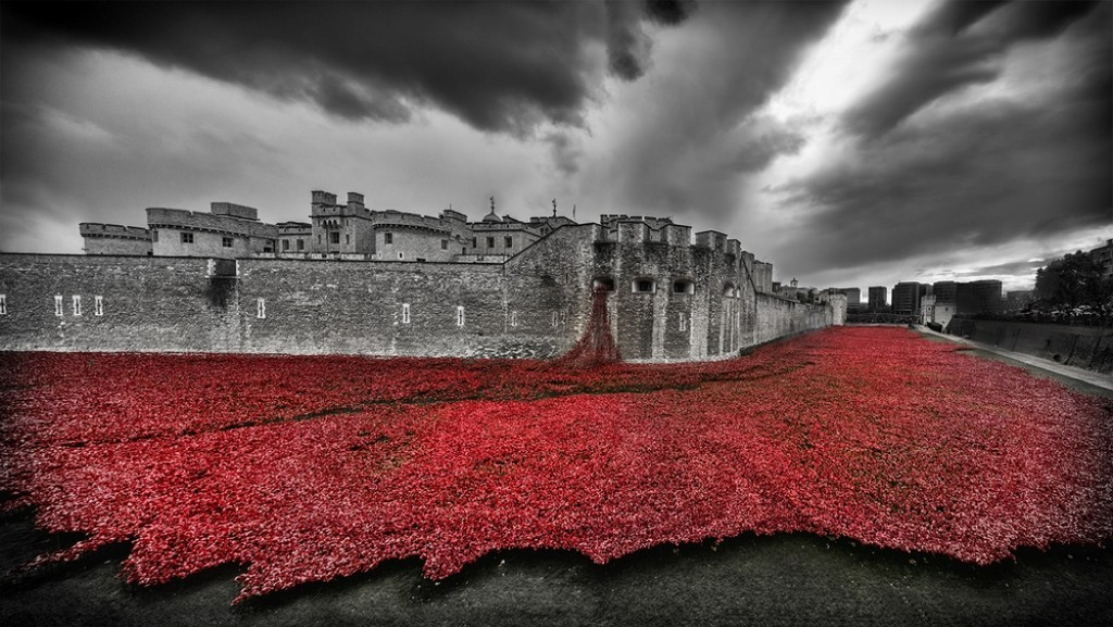 888246-Breathtaking-Poppies-Make-the-Tower-of-London-More-Stunning-171 888,246 Breathtaking Poppies Make the Tower of London More Stunning