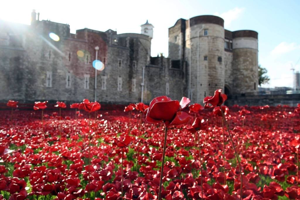 888246-Breathtaking-Poppies-Make-the-Tower-of-London-More-Stunning-201 888,246 Breathtaking Poppies Make the Tower of London More Stunning
