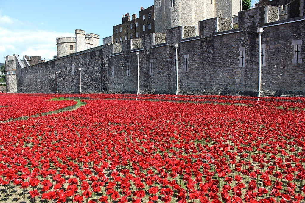888246-Breathtaking-Poppies-Make-the-Tower-of-London-More-Stunning-211 888,246 Breathtaking Poppies Make the Tower of London More Stunning