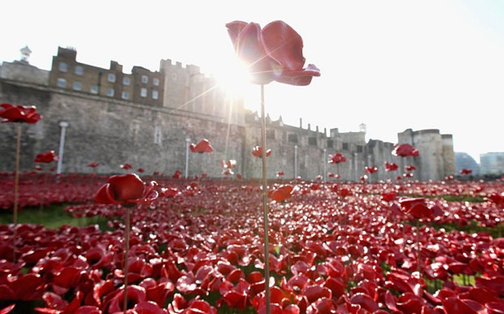 888246-Breathtaking-Poppies-Make-the-Tower-of-London-More-Stunning-221 888,246 Breathtaking Poppies Make the Tower of London More Stunning