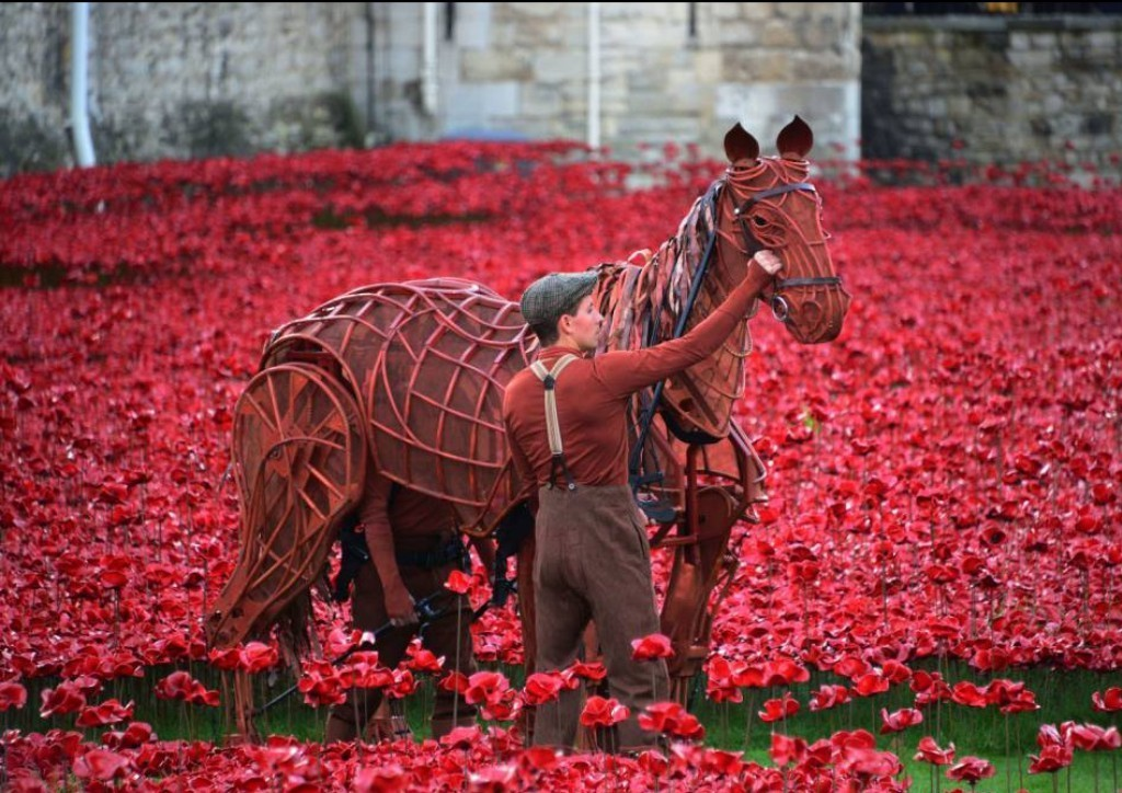 888246-Breathtaking-Poppies-Make-the-Tower-of-London-More-Stunning-241 888,246 Breathtaking Poppies Make the Tower of London More Stunning