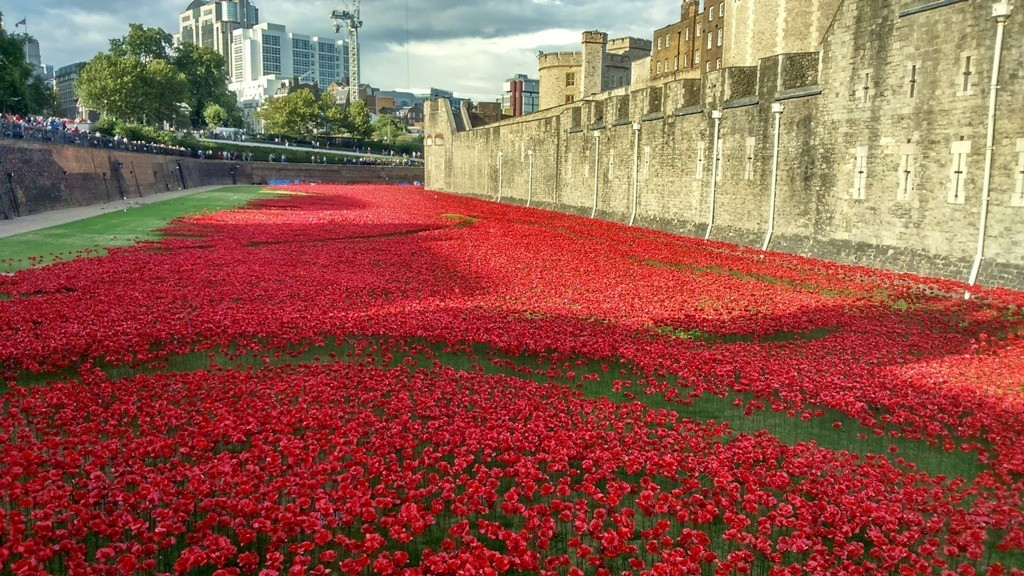 888246-Breathtaking-Poppies-Make-the-Tower-of-London-More-Stunning-61 888,246 Breathtaking Poppies Make the Tower of London More Stunning