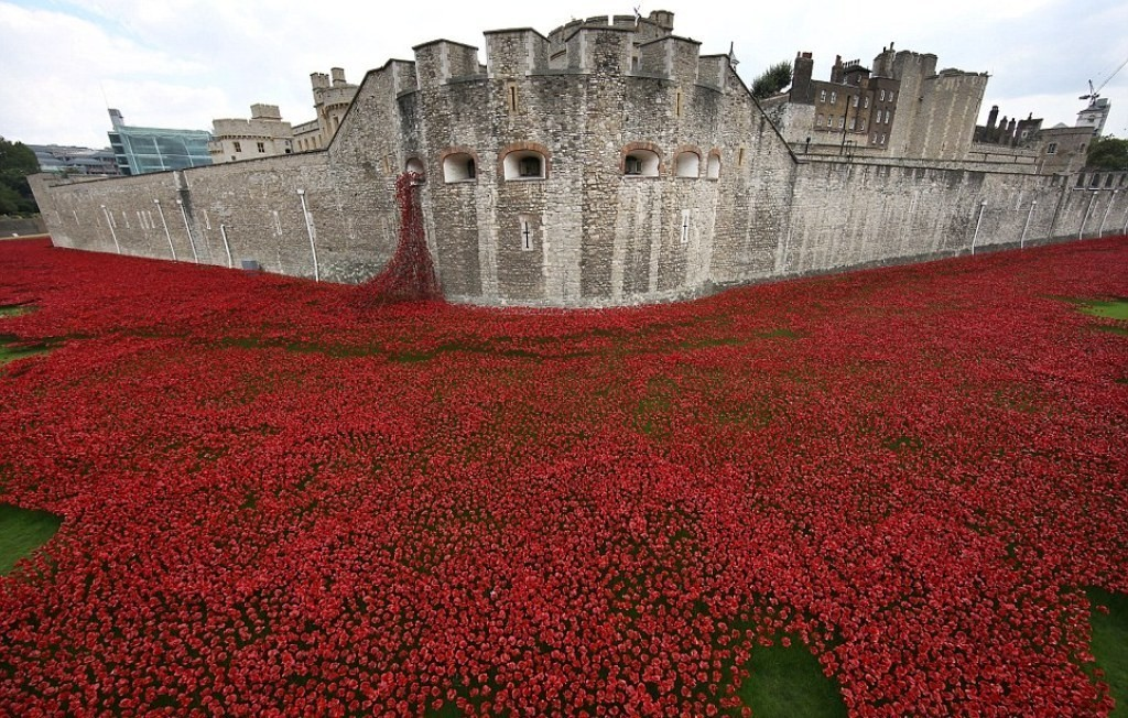888246-Breathtaking-Poppies-Make-the-Tower-of-London-More-Stunning-71 888,246 Breathtaking Poppies Make the Tower of London More Stunning
