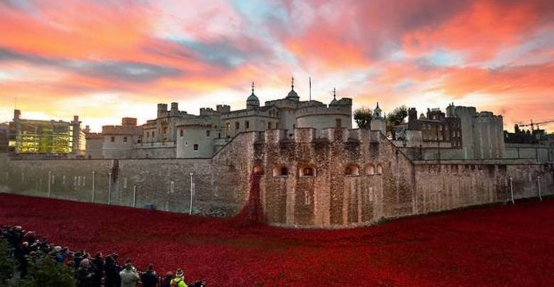 Photo of 888,246 Breathtaking Poppies Make the Tower of London More Stunning