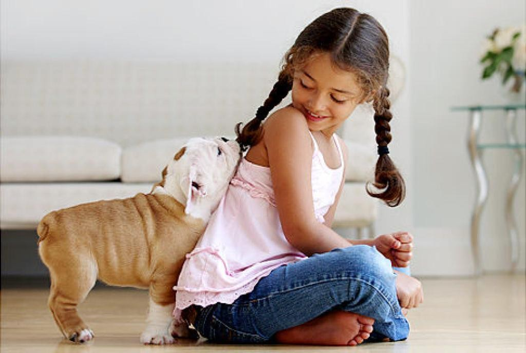 Does-Your-Pet-Have-Some-Kind-of-Allergy-19 Does Your Pet Have Some Kind of Allergy?