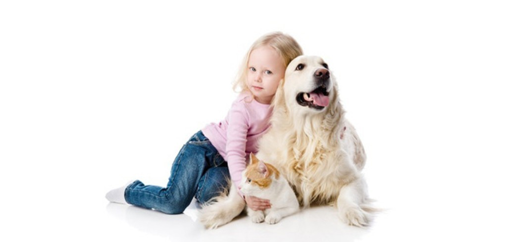 Does-Your-Pet-Have-Some-Kind-of-Allergy-27 Does Your Pet Have Some Kind of Allergy?