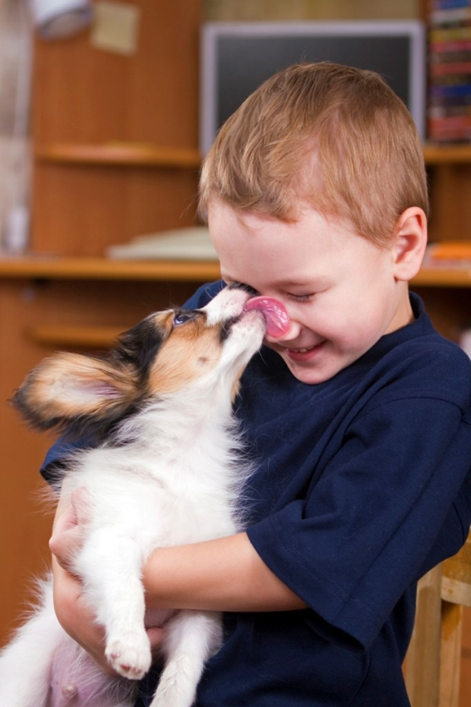 The-Main-Health-Guide-to-Take-Care-of-Your-Pets-301 The Main Health Guide to Take Care of Your Pets