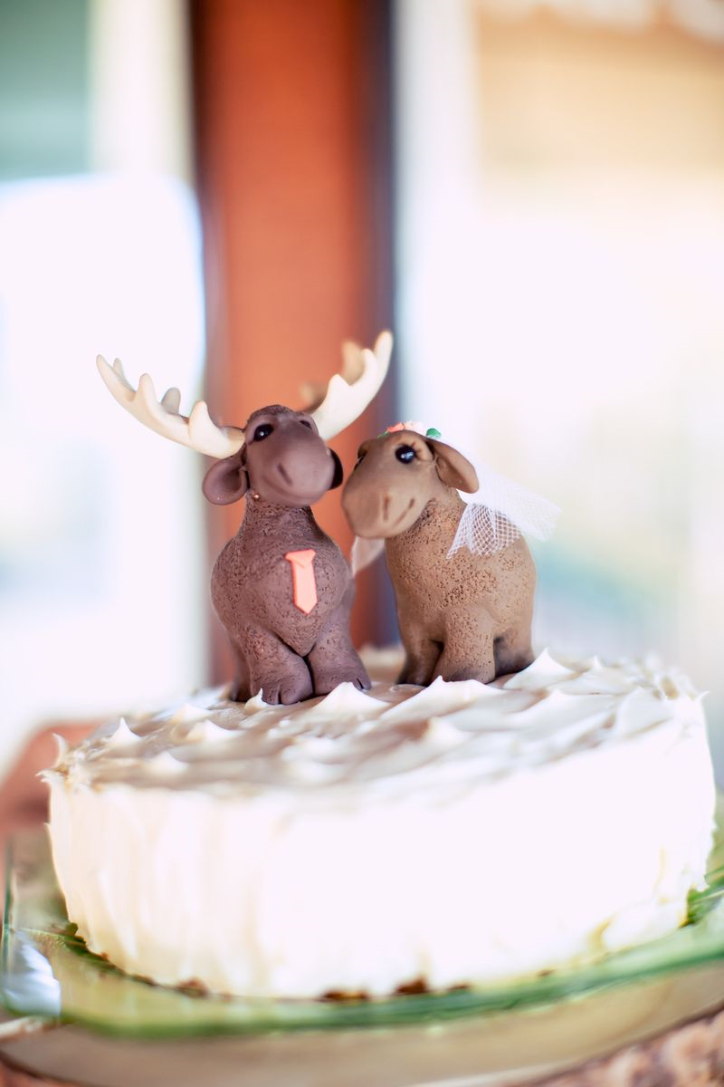 6a01156f9ad9e3970b01a73df0a13c970d Top 10 Most Unique and Funny Wedding Cake Toppers 2019