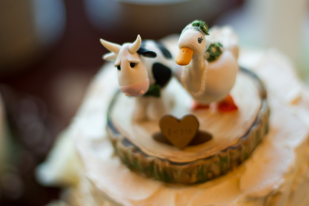 hurd-reception-13 Top 10 Most Unique and Funny Wedding Cake Toppers 2019