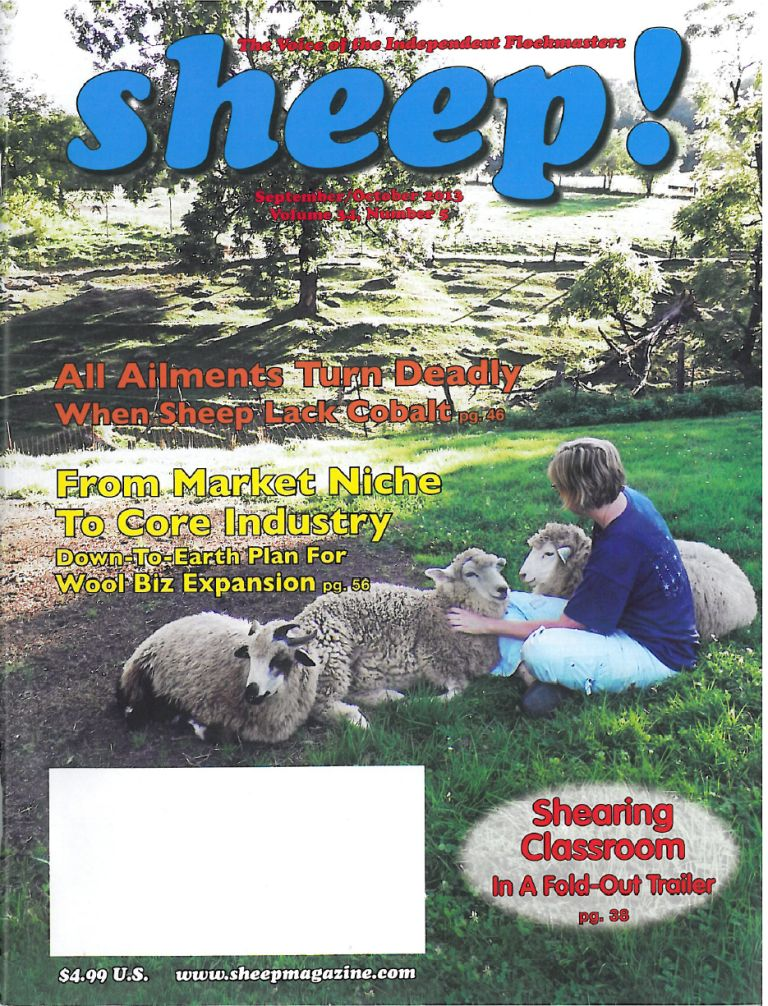 Sheep-Cover-compressed Top 10 Weirdest Magazines in the World