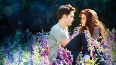 Photo of Top 10 Twilight Mistakes
