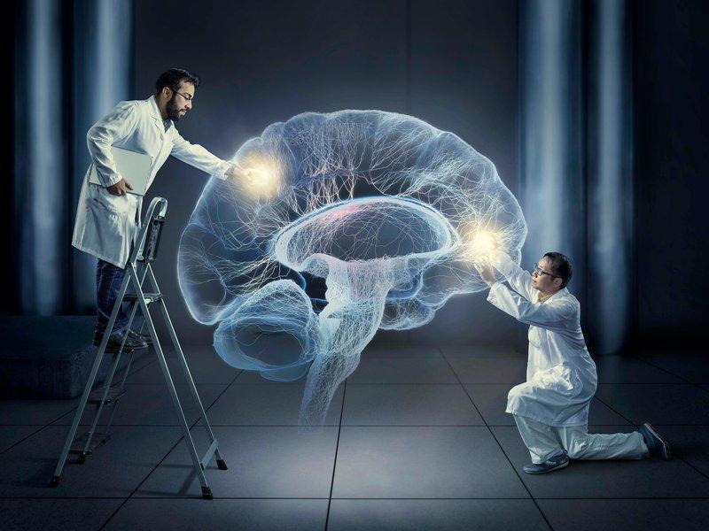 nov14_d02_ramirezliu-main.jpg__800x600_q85_crop_subject_location-30571514 Top 10 Hottest Topics in Brain Sciences
