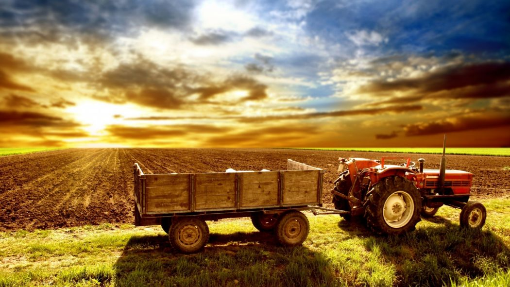 216824-agriculture-wallpaper-hd Top 10 Muslim Inventions