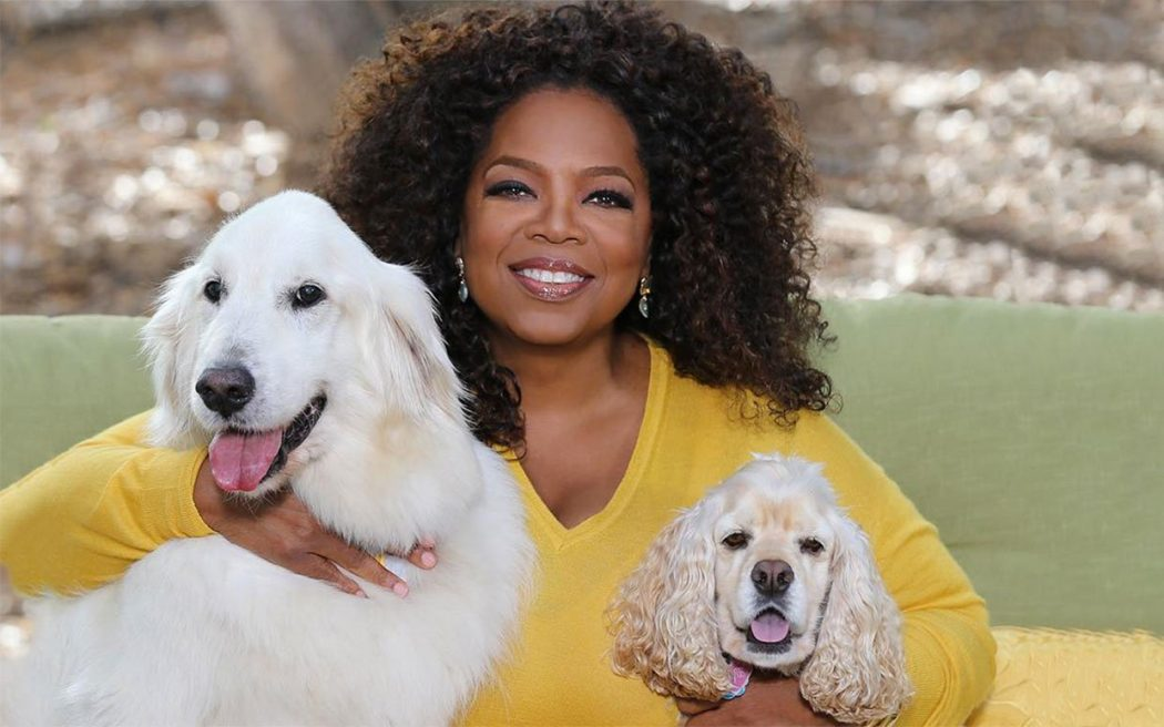 oprah-winfrey-national-dog-day-ftr Top 10 Life Advices from Oprah Winfrey