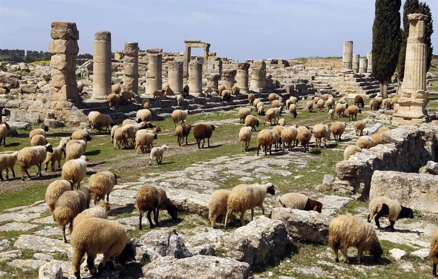 pb-110326-libya-jb01.photoblog900 Top 10 Most Ancient Cities in Arabic Countries
