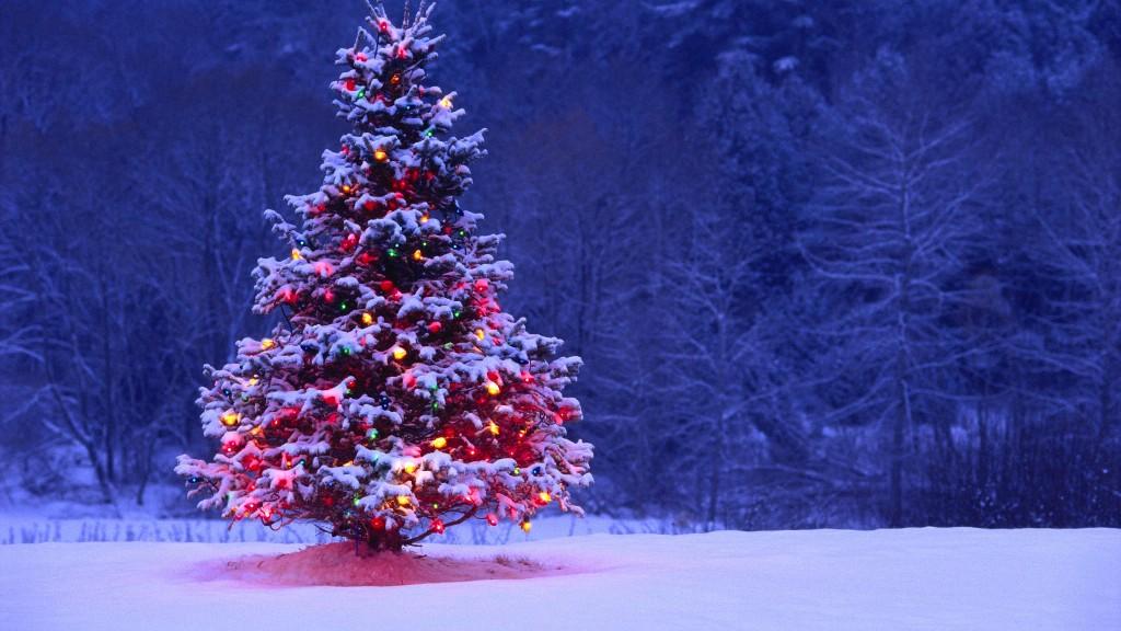 christmas-decoration-2016-47 69 Stunning Christmas Decoration Ideas 2021