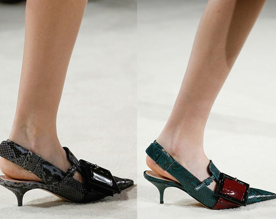 narrow-and-long-nose-2 The Latest Shoe Trends for Women in 2016