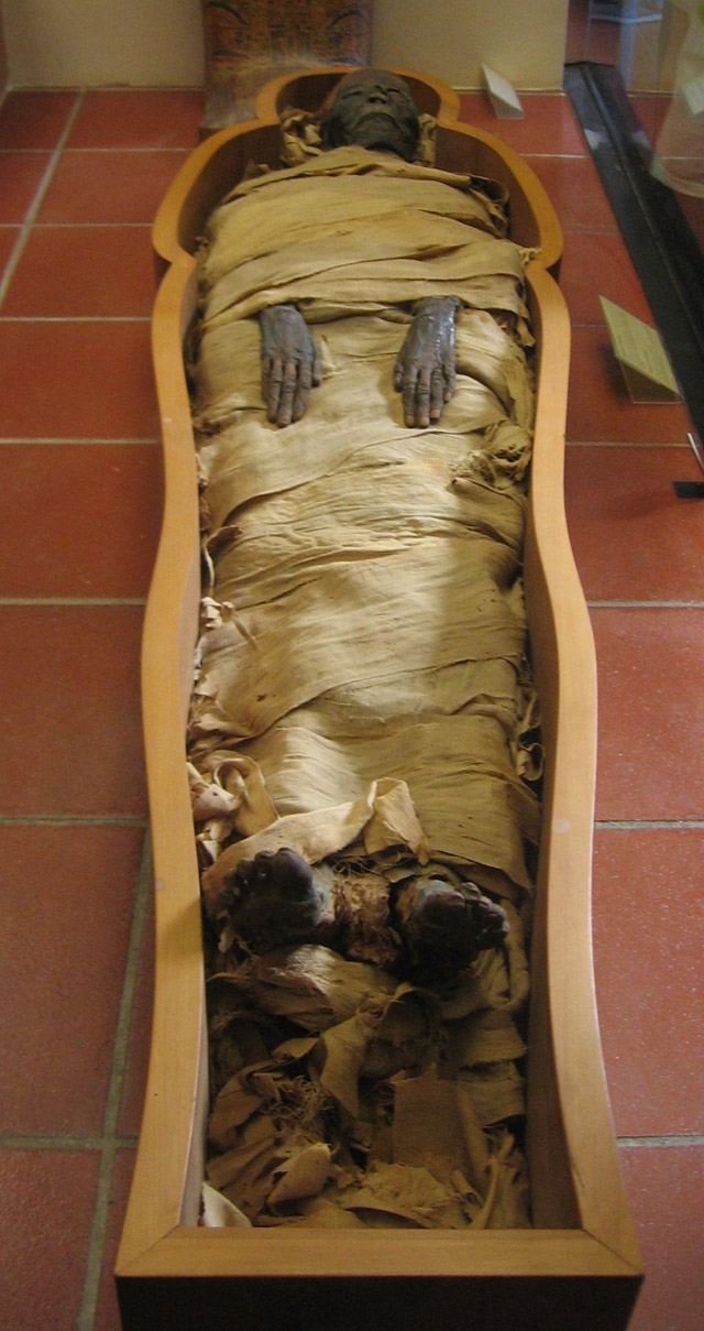 Mummy_in_Vatican_MuseumsWiki-Joshua-Sherurcij 13 Fascinating Facts about Ancient Egypt