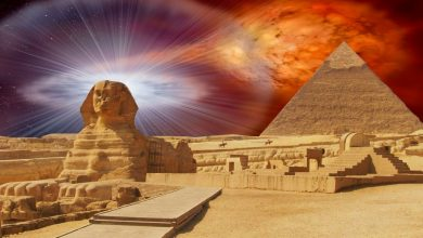 Photo of 13 Fascinating Facts about Ancient Egypt