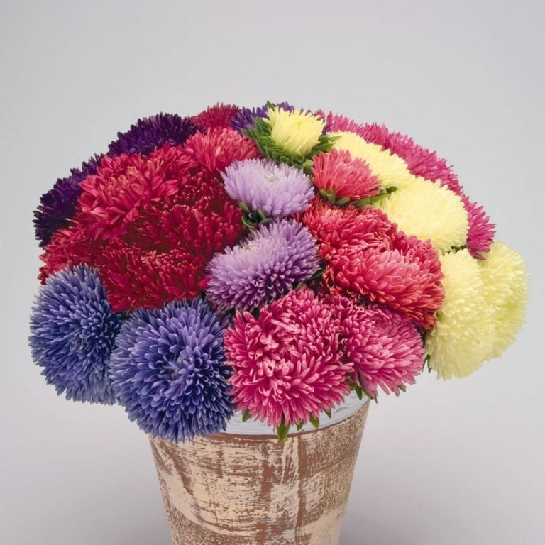 fascinating-flowers-5 22 Dazzling Valentine's Day Gifts for Women