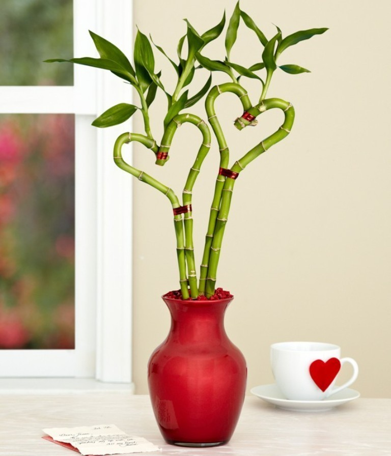 heart-shaped-bamboo 22 Dazzling Valentine's Day Gifts for Women