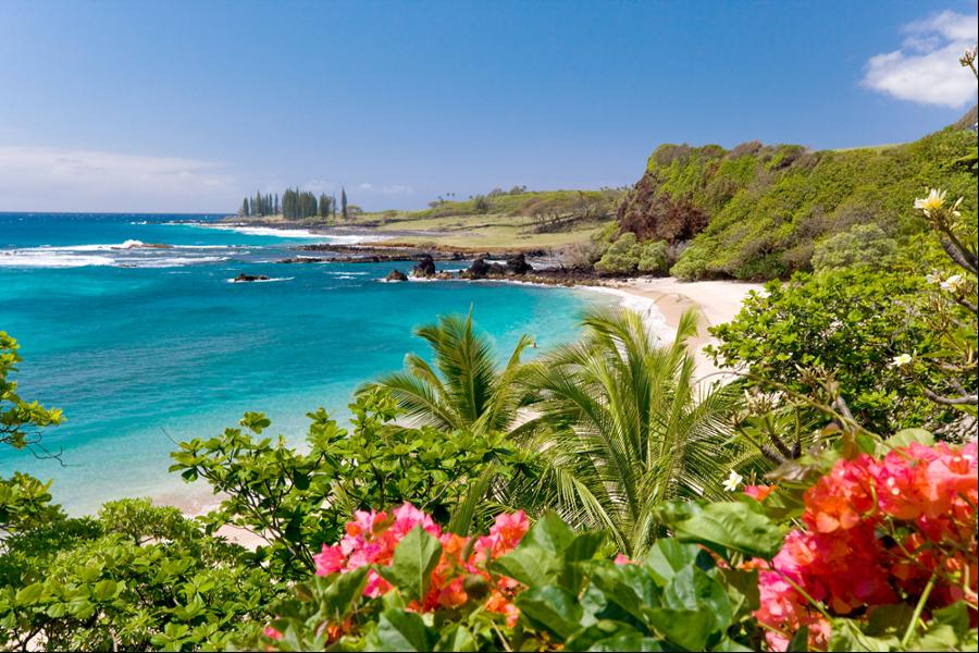 Hamoa-Beach-Maui-Hawai1 5 Most Beautiful Beaches in The World
